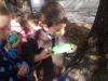 Raziskujemo gozd